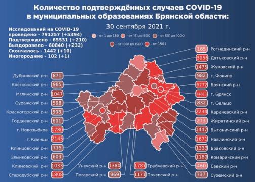 Коронавирус в Брянской области - ситуация на 30 сентября 2021